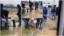 Viral video shows Americans queueing to fetch water from 1 tap amid power outage