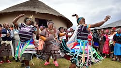 Here is everything you need to learn about Zulu culture