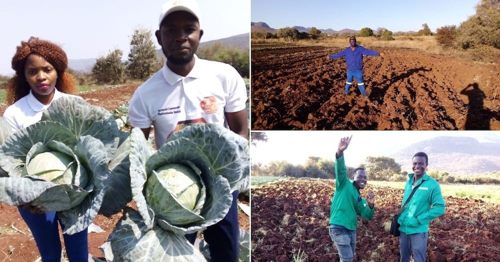 Exclusive: Man, 26, becomes farmer after failing to secure internship