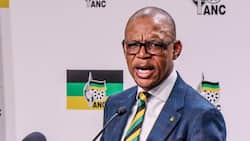 Ace Magashule claims judges are biased in attempt to overturn suspension