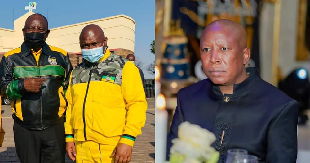 Ramaphosa, Malema, tragic death, Johannesburg Executive Mayor Jolidee Matongo, reactions, breaking, politics
