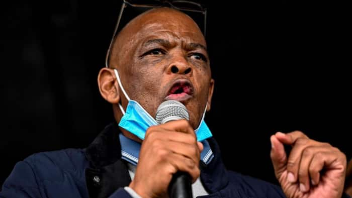Suspended Magashule to campaign for ANC despite ruling: 'Nobody asked him'