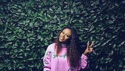 Confusing the enemy: DJ Zinhle shares picture that shatters pregnancy rumours