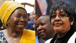 NDZ: Renaming municipality after Winnie is good for 'service delivery'