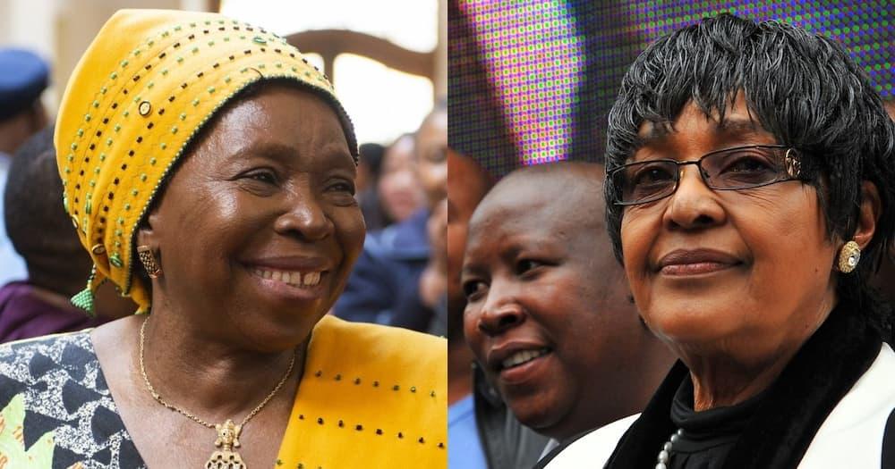 Dlamini Zuma: Renaming Mbizana Municipality good for 'service delivery'