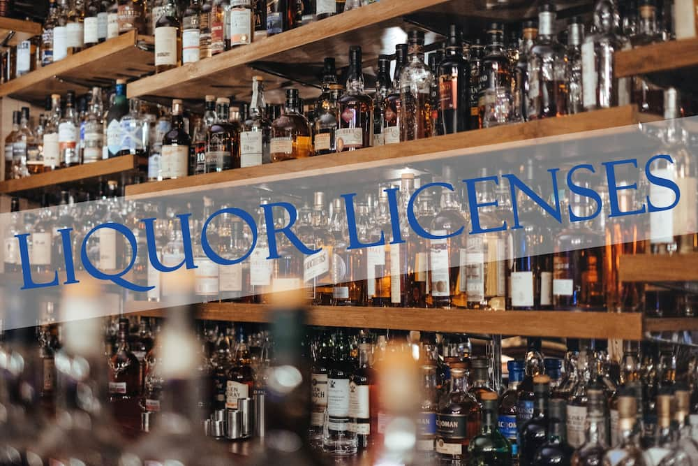 Liquor license search