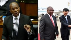 Maimane red-faced over claim Ramaphosa went to Russia for nuclear deal