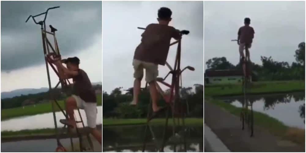 The young boy rode his tall bicycle effortlessly