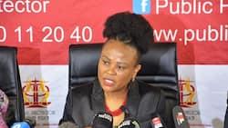 Shivambu on Mkhwebane: We'll split ANC Caucus and defeat the motion