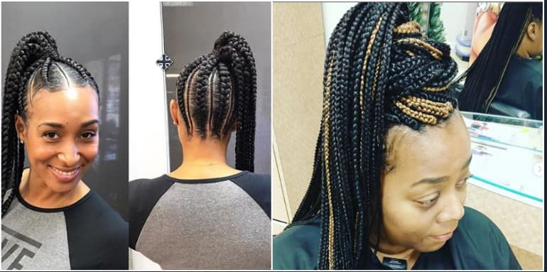 Hairstyles 2019 Female Braids: 30+ Best African Braids Hairstyles With Pictures You