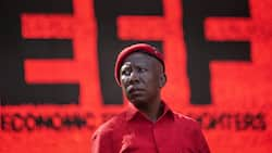 Malema wants the DA To retract incitement allegations or he is suing for R1 million