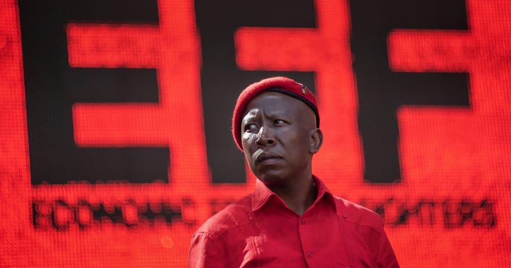 Julius Malema, EFF, John Steenhuisen, Democratic Alliance, incite violence