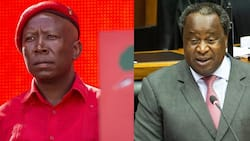 Julius Malema calls Tito Mboweni out for comment about Wits death