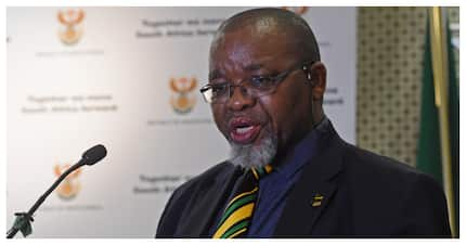 Mantashe defends the ANC's involvement with the Guptas' bank accounts