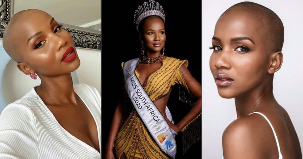 Miss SA, Shudu Musida trends as Mzansi debates her fiery bikini pics