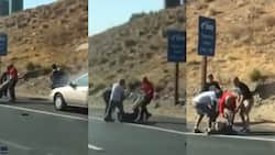 Good Samaritans heading home from bible study rescue elderly couple from burning car