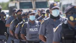 Police in Limpopo make over 2 000 arrests and recover 30 illegal firearms
