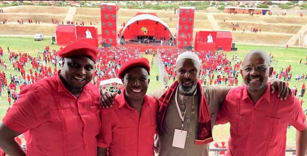 Dali Mpofu Political Career