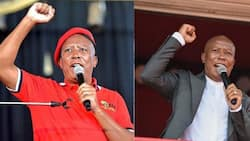 Casac: Julius Malema in breach of ethics code, should be removed as JSC member