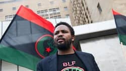 Black First Land First officially deregistered as political party