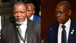 Mantashe backs Mkhize, says resignation would be an 'occupational hazard'