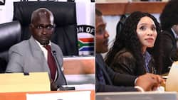 Malusi Gigaba claims he thought Norma Mngoma paid for their honeymoon