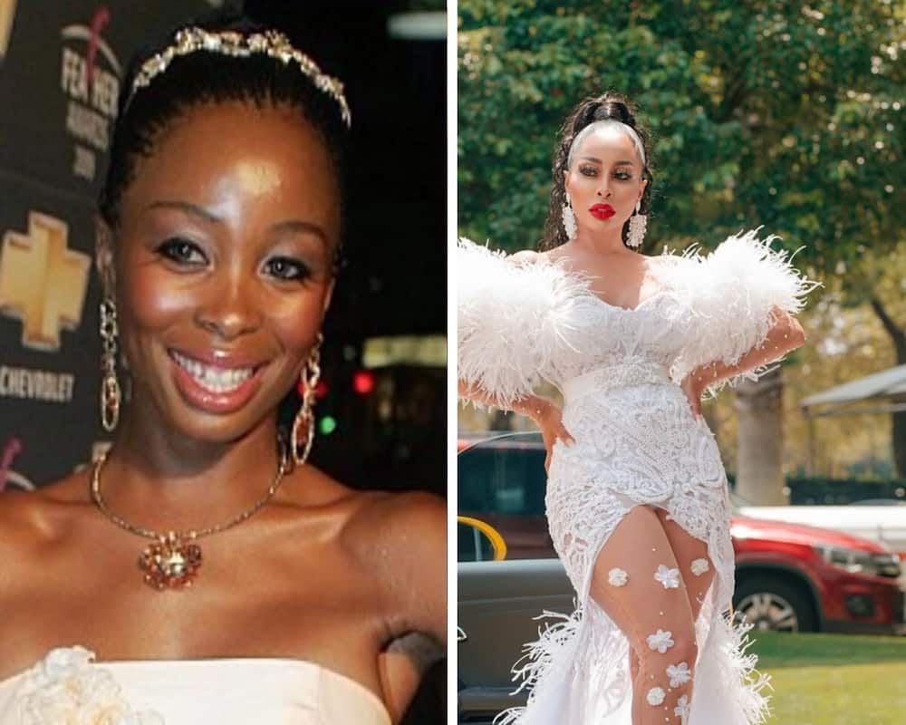 SA celebrities before and after plastic surgery
