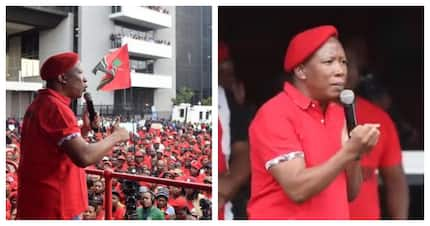 Julius Malema says the state capture inquiry is stealing from the poor