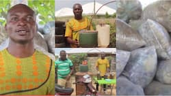 Francis Kantavooro: Genius man turns plastic waste into fuels to power cars and for household use