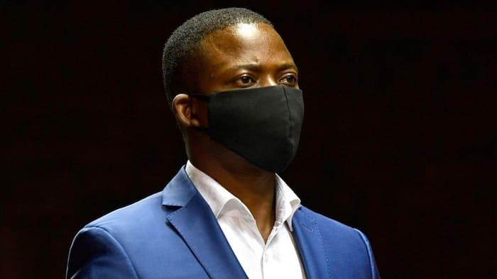 Bushiri saga: SA has differing opinions on 5 Home Affairs officials' suspension