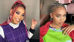"""Sho Madjozi thanks fans for supporting Xitsonga mixtape: """"I took such a risk"""""""