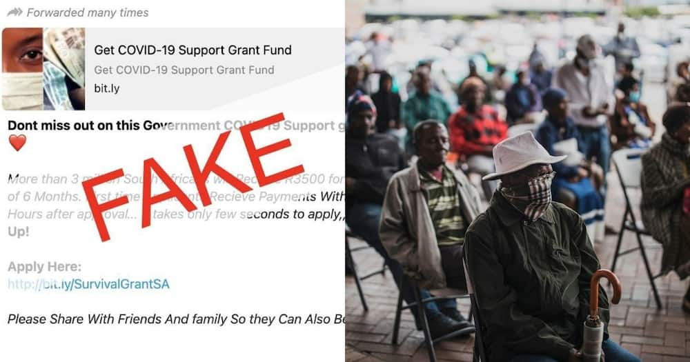 Fact Check: Covid19 grant message did not come from Sassa