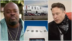 Former Tesla worker takes Elon Musk's company to court over racial abuse, wins R2 billion