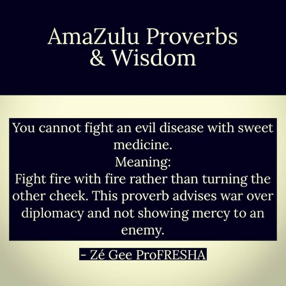 Wise Zulu proverbs and their meanings