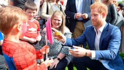 Prince Harry pays surprise visit to children's charity, joins cute garden party