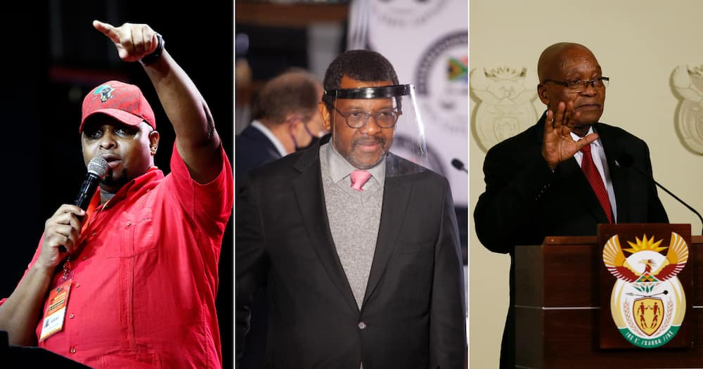 Floyd Shivambu says Dali Mpofu can represent anyone he wants amidst Jacob Zuma case, sparks reactions