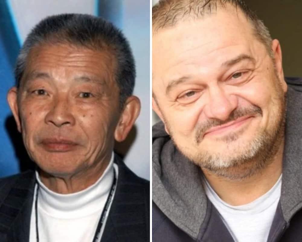 Avatar: The Last Airbender voice actors
