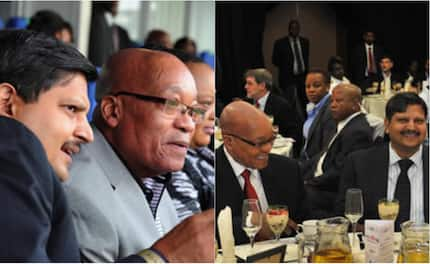 A collection of all the Trevor Noah jokes involving Jacob Zuma and the Guptas