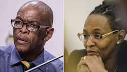 ANC 'feels vindicated' following dismissal of Ace Magashule's appeal application, reactions