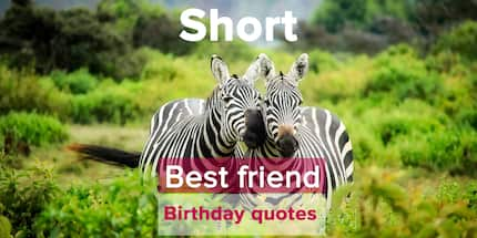Short best friend birthday quotes