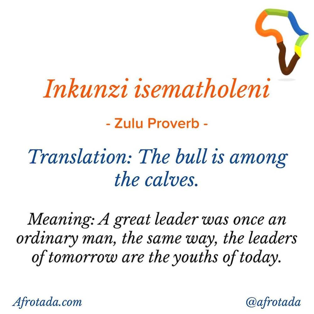 Isizulu proverbs, idioms, quotes, and words