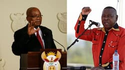 Blade Nzimande says Jacob Zuma hurt NSFAS by announcing free education