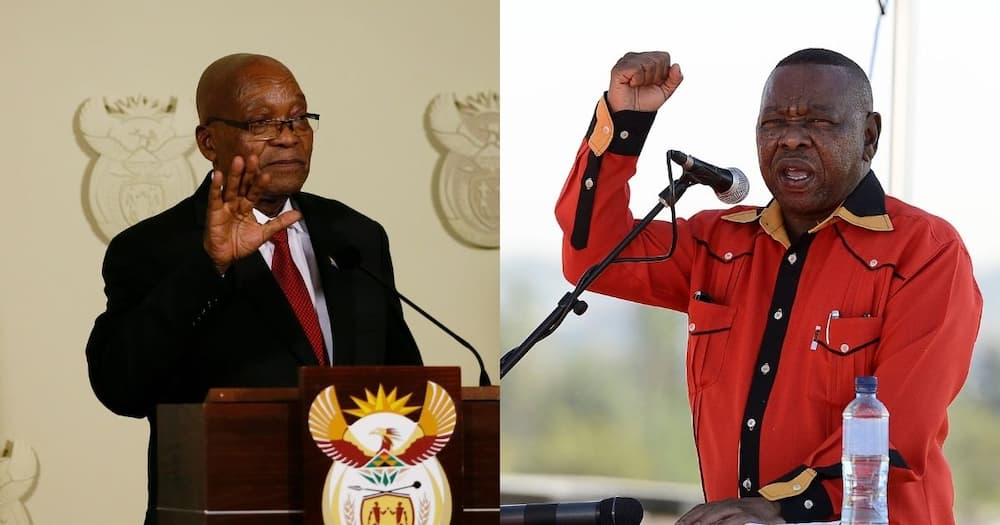 Nzimande says Zuma made things difficult by announcing free education