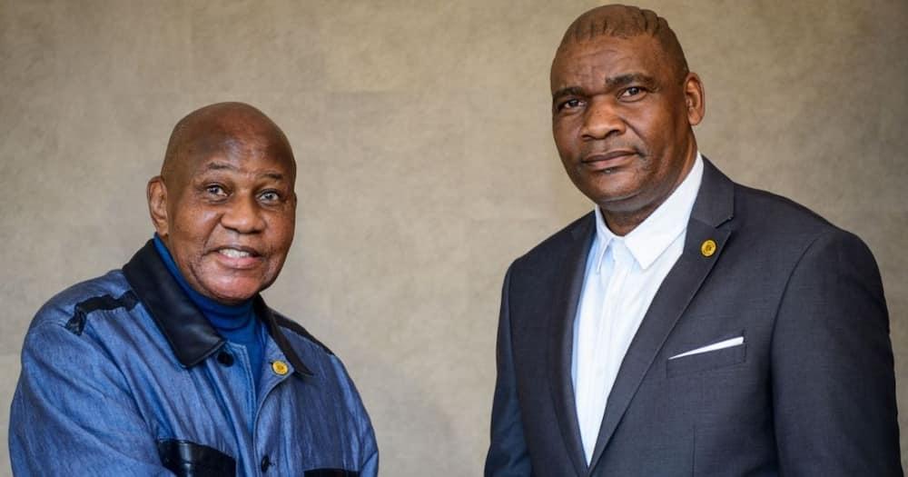 Kaizer Chiefs legend Rudolph Seale has shared his views on coach Molefi Ntseki's appointment. Image: @KaizerChiefs/Twitter