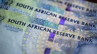 Business News: WhereIsMyTransport start up gets R42m investment