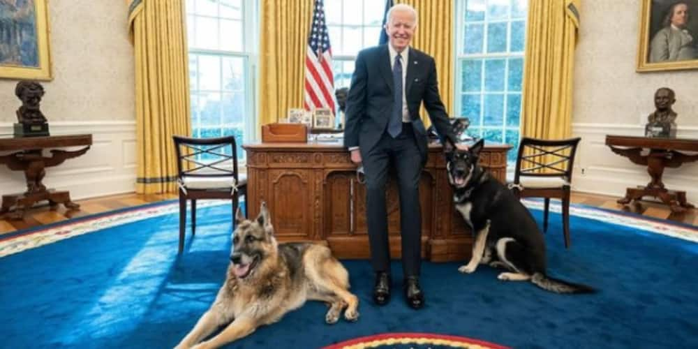 Not many people have Oval Office walk-in privileges. Happy to report that these two are on the list
