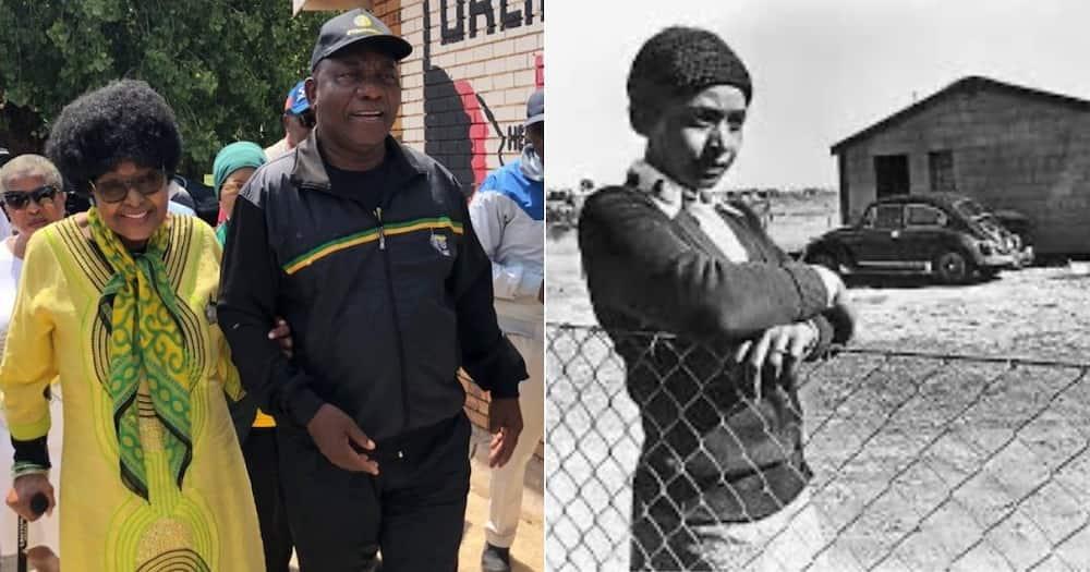 President, Cyril Ramaphosa, Honours, Late Ma Winnie, Birthday