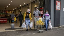 AgriSA warns of possible rise in food prices or shortages if looting continues