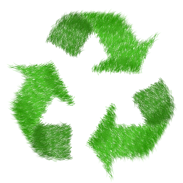 How to start a recycling business in South Africa