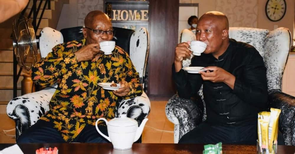 Jacob Zuma Gives Malema His Terms to Appear at Zondo Commission